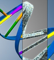 3d-design - The Secret DNA of Effective Safety Training