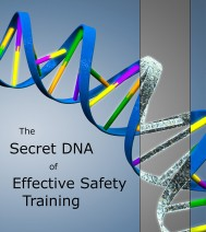 The Secret DNA of Effective Safety Training | Rainman.nl | 3D-Design